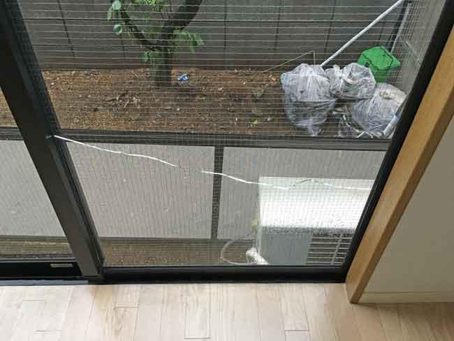 網入りガラスのひび割れ